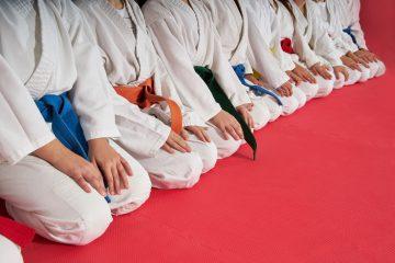 Best Martial Arts software