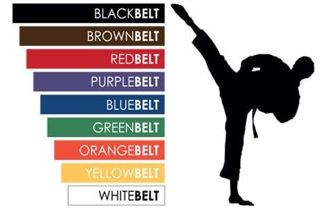 Belt Tracking Graphic-Edit